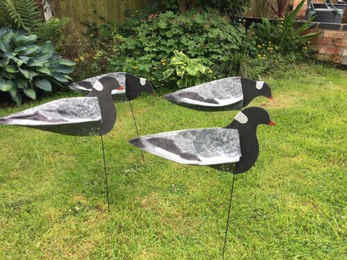 Pigeon decoys Lot de 4 SILLOSOCKS Pigeon decoys