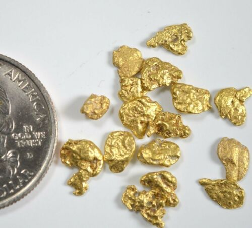 Alaskan Yukon BC Gold Rush Nuggets #6 Mesh 5 GRAMS OF CLEAN GOLD FLAKES.