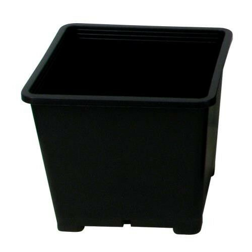 Injection Molded Premium Black Square Pots Various Sizes Lot of 10 // 25 // 50