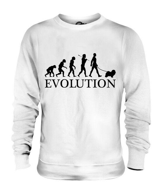 HAVANESE EVOLUTION OF MAN UNISEX SWEATER MENS damen damen damen LADIES DOG LOVER GIFT  | Verwendet in der Haltbarkeit  | Online Shop Europe  | Haltbarkeit  75a08b