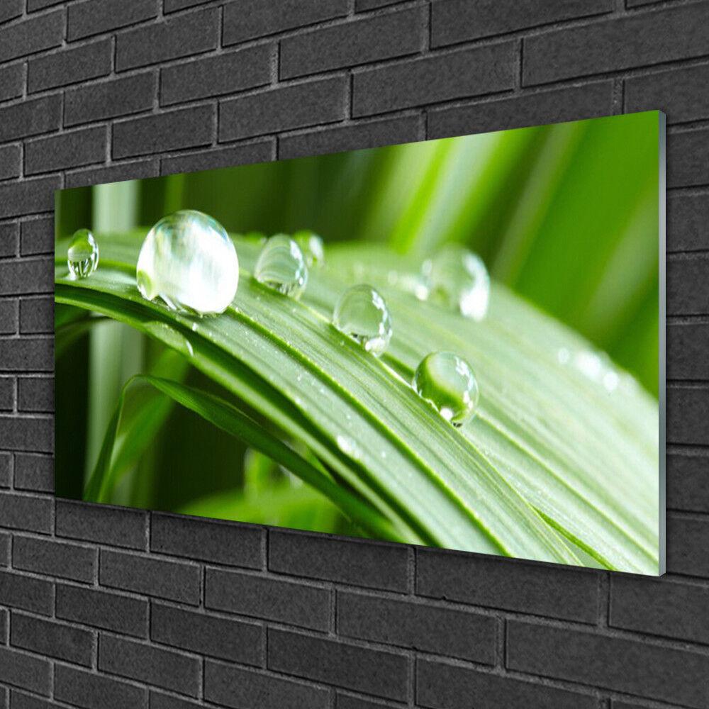 Image sur verre acrylique Tableau Impression 100x50 Floral Feuille Rosée Gouttes
