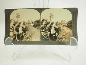 Antik-Stereoskopie-Karte-Keystone-V18856-der-Hund-in-War-Reporting-Sich-Erste