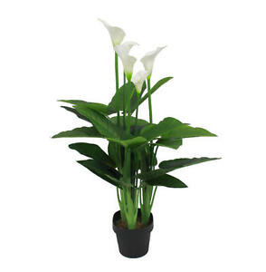 Artificial-107cm-White-Calla-Lily-Magnolia-Flower-Realistic-Potted-Plant-Flowers