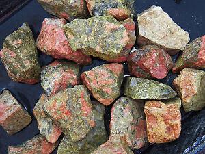 1//2 lb PETRIFIED WOOD TUMBLING ROUGH Tumbler Rocks Stones 20-40g INDONESIA