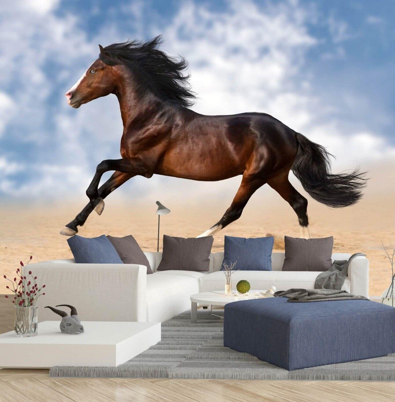 Vlies   Fototapete Tapete Wandbild 15F0128900 Pferd im Galopp am Strand  Tiere //