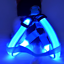 Dog-Harness-Collar-Nylon-LED-Small-to-Large-Pet-Cat-Safety-Light-Up-High-Quality thumbnail 5