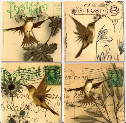 Vintage inspired hummingbird cards set of 8 with envelopes and organza bag