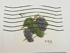 Stamp, USA, 5 Cents, 2016, Grapes & Vines