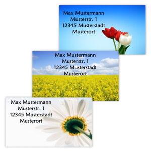 40-Adressetiketten-Adressaufkleber-oder-10-Visitenkarten-Motiv-034-Fruehling-034