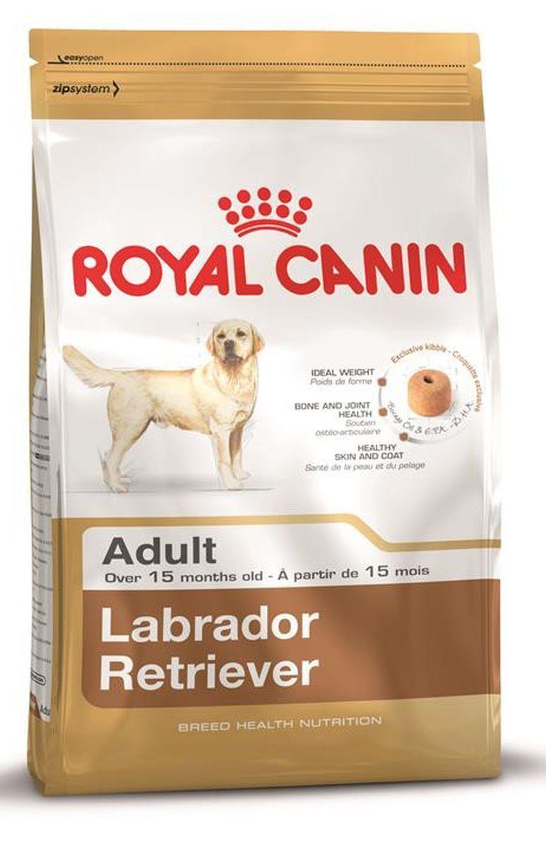 Royal Canin Labrador Retriever Adulto 12kg