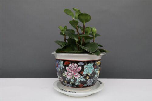 Blumentopf Blumenübertopf Pflanztopf Porzellan China Schwarz Ø 22 cm  P0019-2