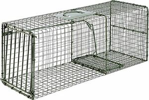 Catch & Release Live Animal Trap for Raccoons Cats and Armadillos