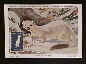 Andorre Mk 1977 Animaux Hermelin Stoat Maximum Carte Carte Maximum Card Mc Cm C8258-afficher Le Titre D'origine Qualité Et Quantité AssuréE