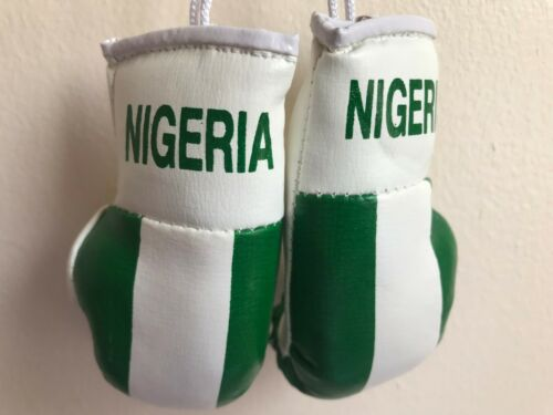 NIGERIA flag Mini Boxing Gloves for Car Truck Bus Jeep SUV RV Decor Rear-View Mi