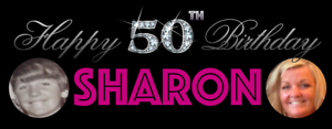 Birthday-Party-Banner-18th-21st-30th-40th-50th-60th-Bling-Numbers