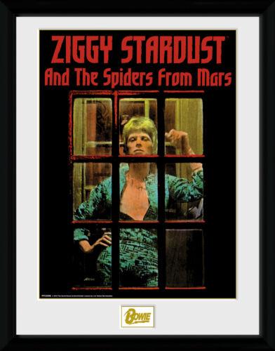 David Bowie Ziggy Stardust Collector Print 30x40cm12x16
