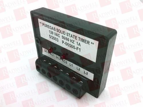 PUREGAS P-06500-F1 NEW NO BOX P06500F1