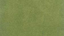 WOODLAND SCENICS WS-RG5142 14.125X12.5 GREEN RG PROJ SHT