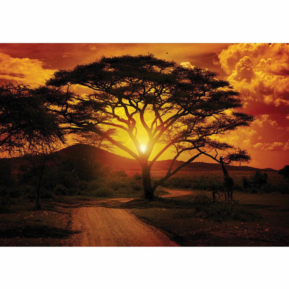 Foto Mural Puesta de Sol Árbol África Atardecer orange Liwwing N°284