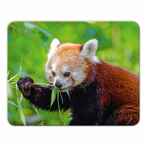 """Mousepad  /""""Kleiner Panda/"""" Moosgummi 24x19cm Katzenbär Roter Panda"""