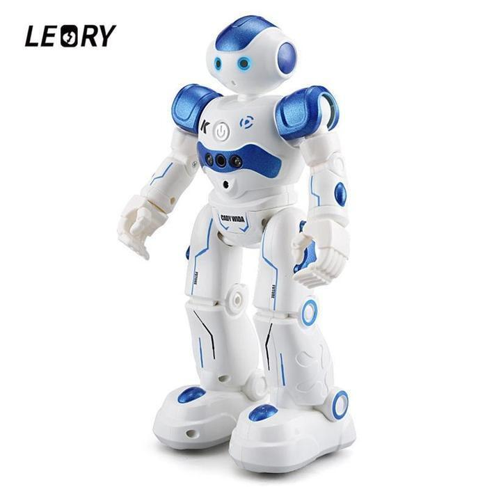 Robot Toy Leory RC Intelligent Programming Remote Control, Birthday Gift Present