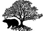 bearsbonsai