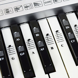 Piano-and-Keyboard-Full-Set-Stickers-for-White-and-Black-Keys