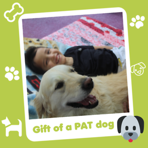Helen and Douglas House Charity Gift that Gives Twice    PAT A DOG £16