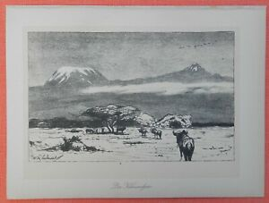 Le Kilimandjaro Mont Kilimandjaro Wilhelm Kuhnert Afrique Lithographie 1920-afficher Le Titre D'origine