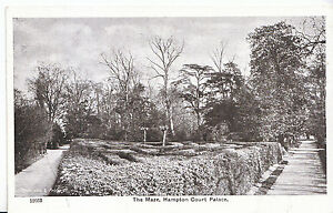 Middlesex-Postcard-The-Maze-Hampton-Court-Palace-Z419