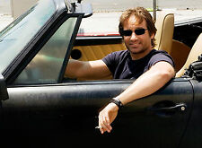 PHOTO CALIFORNICATION  -DAVID DUCHOVNY  - FORMAT 11X15 CM - #2