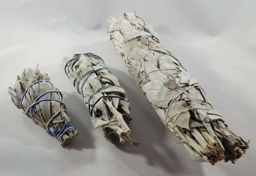 frischer weißer Salbei Smudge Stick White Sage Räucherbündel weiß
