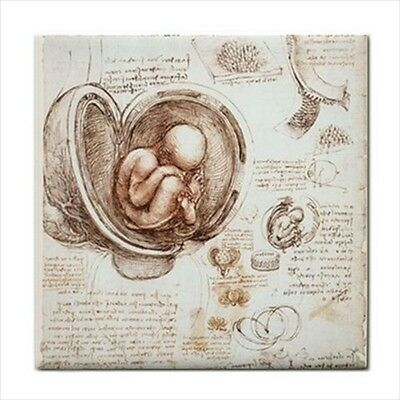 Studies Of Embryos Leonardo Da Vinci Art Ceramic Tile