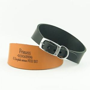 Dog-Collars-Personalised-Greyhound-Lurcher-Whippet-Saluki-Deerhound-Leather