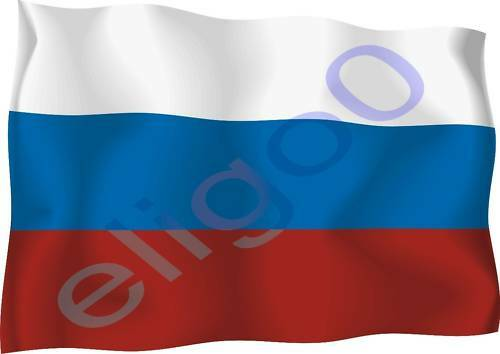 1x RUSSIA STICKER WAVING FLAG BUMPER decal
