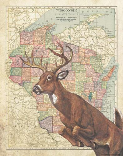 Whitetail Deer Hunting Wisconsin State Map Art Print Unlimited Buck Sheds MAP10
