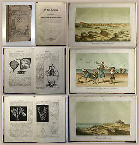 Riefkohl-Die-Insel-Norderney-1861-Ortskunde-Niedersachsen-mit-Farblithografien
