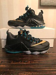 Nike LeBron 12 XII Low SVSM Carbon