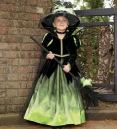 Wishcraft witch costume, hat, choker and broom siz