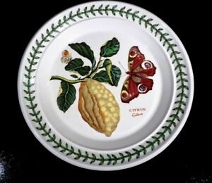 Beautiful-Portmeirion-Botanic-Garden-Citrus-Bread-Plate