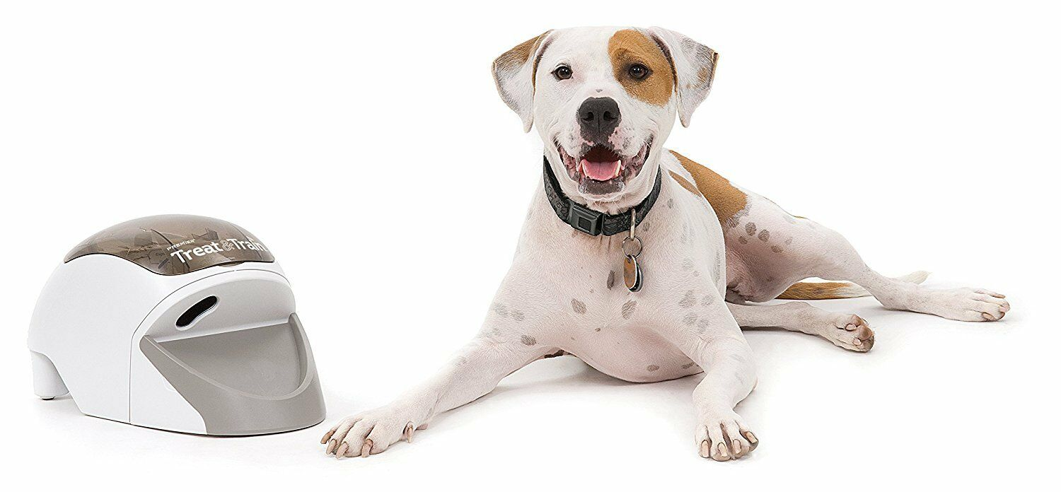 PetSafe Treat & Train Remote Reward Reward Reward Dog Trainer Remote-controlled food di... 5ed01e
