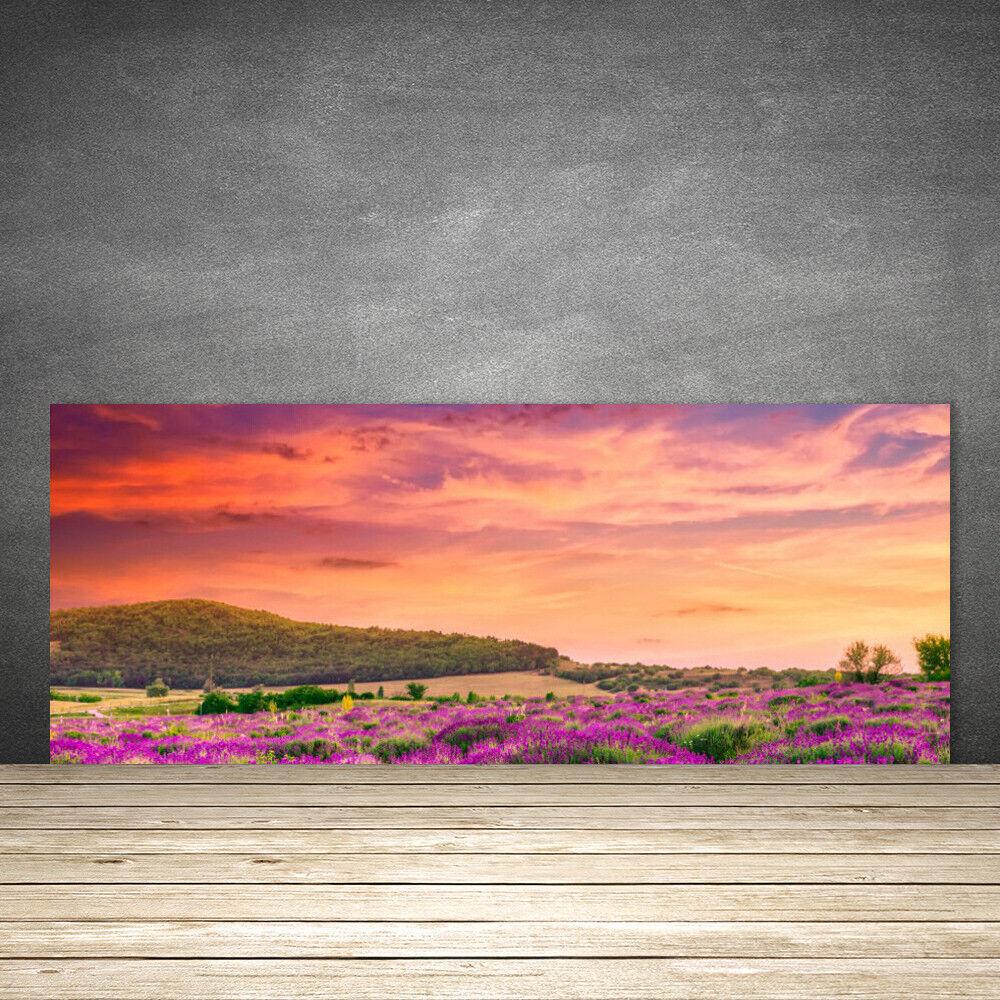 Crédence de cuisine en verre Panneau 125x50 Paysage Prairie Fleurs