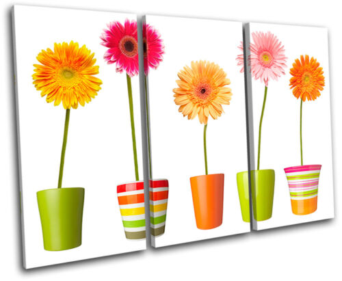 Flowers Pots Floral TREBLE CANVAS WALL ART Picture Print VA
