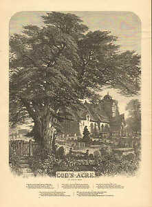God-039-s-Acre-by-Samuel-Read-Poem-Church-Cemetery-Vintage-1876-Antique-Print