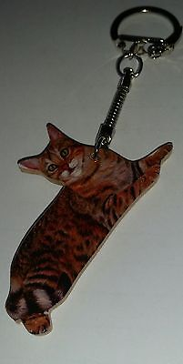 Keyring ANY MAN CAN BE A SPECIAL TABBY CAT DADDY Novelty Key Ring Gift Present