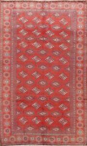 Geometric Semi-Antique Bokhara Oriental Area Rug Hand-knotted Wool Carpet 6x8