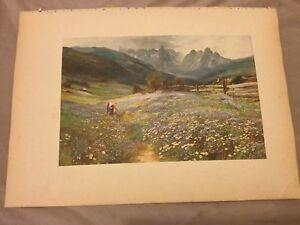 Antique-Book-Print-June-in-the-Austrian-Tyrol-MacWhirter-1910