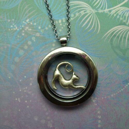 Floating Charm Memory Locket Necklace Slinky Silver Cat Glass Story Locket