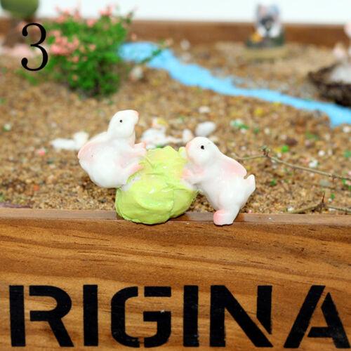 Miniature Fairy Dollhouse Landscape Garden Terrarium Figurine Bonsai DecoratioTS