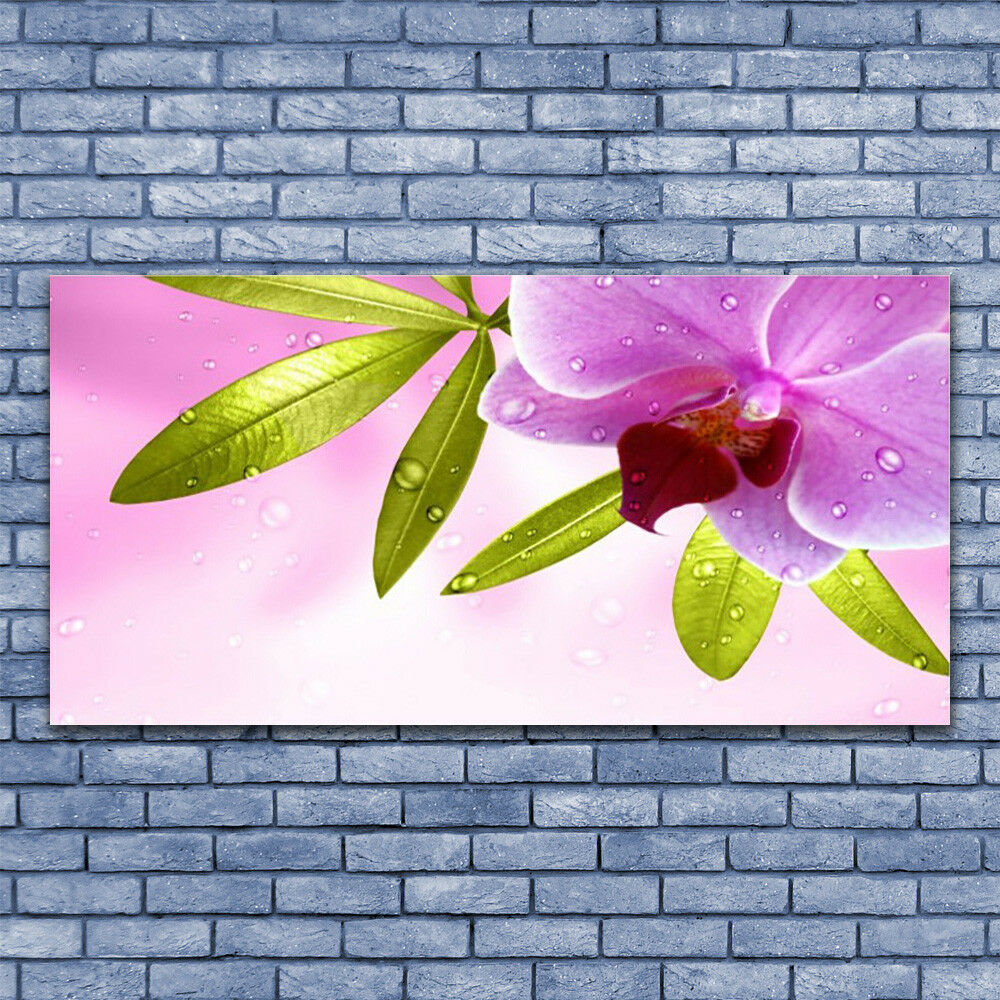 Print on Glass Wall Wall Wall art 140x70 Picture Image Flower Leaves Floral ca165a